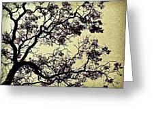 Catalpa Tree Gold Greeting Card