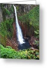 Catarata Del Toro Waterfall Greeting Card