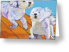 Catch Me     Greeting Card by Pat Saunders-White