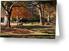 Catching Rays - Davidson College Greeting Card