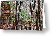 Cathedral In The Woods Greeting Card