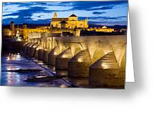 Cathedral Mosque And Roman Bridge In Cordoba Greeting Card