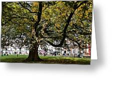 Cathedral Square - Exeter Greeting Card