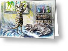 Cats Being Cats Greeting Card