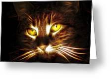 Cat's Eyes - Fractal Greeting Card