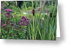 Cattail Pond II Greeting Card