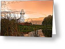 Cattails And Lighthouse In Indiana Greeting Card