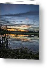 Cattails And Sunset Greeting Card