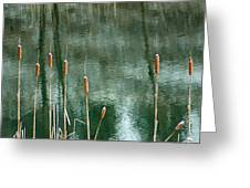 Cattails On Green Greeting Card
