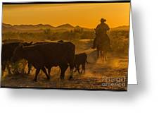 Cattle Drive 10 Greeting Card