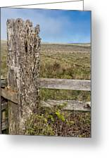 Cattle Fence On The Stornetta Ranch Greeting Card