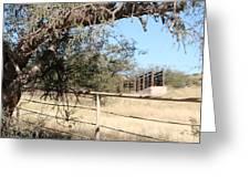 Cattle Ramp Greeting Card