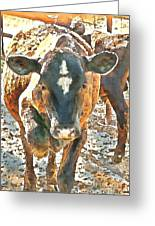 Cattle Round Up Greeting Card