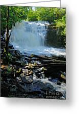 Cattyman Falls 2 Greeting Card