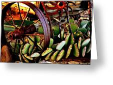 Caught In A Cactus Patch-sold Greeting Card