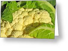 Cauliflower With A Visitor. Square Format Greeting Card