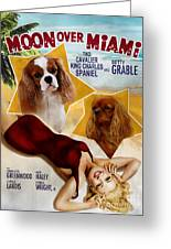 Cavalier King Charles Spaniel Art - Moon Over Miami Movie Poster Greeting Card