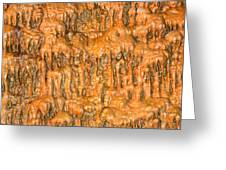 Cave Formation 5 Greeting Card