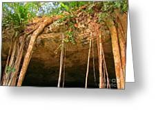 Cave Opening Greeting Card