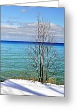 Cave Point County Park Door County  Greeting Card