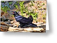 Caw And Friend Greeting Card