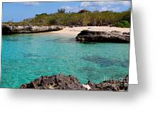 Cayman Beach Greeting Card