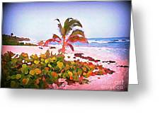 Cayman Island Secret Greeting Card