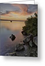 Cayuga Sunset I Greeting Card by Michele Steffey