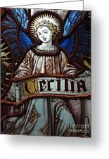Cecilia Greeting Card by Ed Weidman