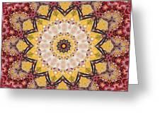 Cecropia Sun 5 Greeting Card
