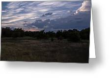 Cedar Park Texas Cedar And Clouds Sunset Greeting Card