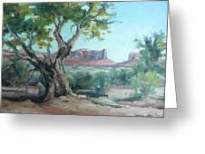 Cedar At Monument Valley Greeting Card