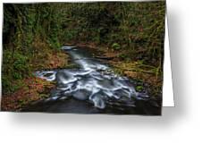 Cedar Creek Horiz. Greeting Card
