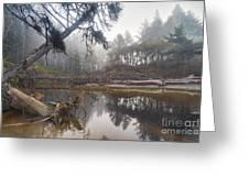 Cedar Creek Lagoon Greeting Card