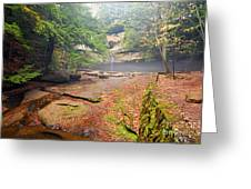 Cedar Falls Greeting Card