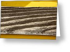 Cedar Plank On Yellow Greeting Card