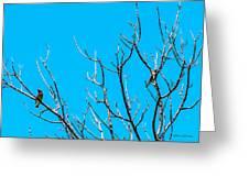 Cedar Wax Wings Greeting Card
