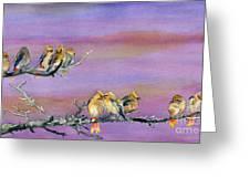 Bohemian Waxwings Birds Greeting Card