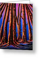 Cedars In Stanley Park Greeting Card