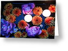 Celebration Of Life - All Souls Night Greeting Card