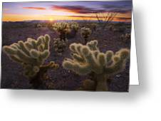Celebration Greeting Card by Peter Coskun