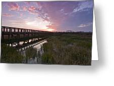 Celery Fields Sunset Greeting Card