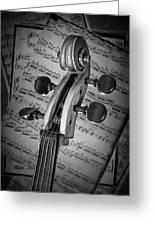 Cello Classic Art Greeting Card