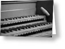 Cembalo Keyboards Greeting Card