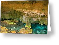 Cenote Two Greeting Card