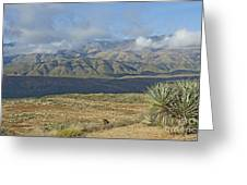 Central Arizona Landscape Greeting Card