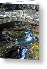Central Cascade Greeting Card by Frozen in Time Fine Art Photography