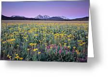 Central Idaho Color Greeting Card