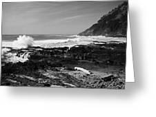 Central Oregon Coast Bw Greeting Card