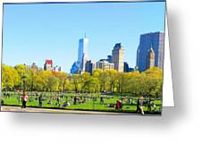 Central Park Panoramic View Greeting Card